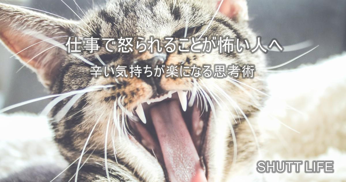 【簡単】仕事で怒られることが怖い人へ!辛い気持ちが楽になる思考術
